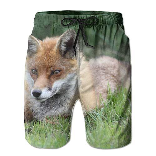 Wild Fox Vulpe Schnelle Trockene Spitze Boardshort Strand Shorts Hosen Badehose Neuesten Jungen Badeanzug Mit Taschen,Größe XL