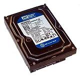 Western Digital (WD) Caviar Blue - Disco duro SATA II, 7200 rpm, 8 MB de caché, para ordenador de sobremesa Mac, CCTV, DVR, NAS y RAID 160 GB