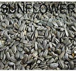Amijivdaya Sunflower Seed Bird Food (2kg)