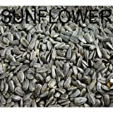 #5: Amijivdaya Sunflower Seed Bird Food (2kg)