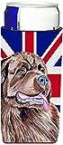 Caroline's Treasures LH9463MUK Newfoundland with English Union Jack British Flag Michelob Ultra Koozies, Slim, Multicolor