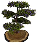 #4: Thefancymart Artificial Bonsai Green Tree plant (size 11.5 inchs/28 cms) in Natural Wood - 1171