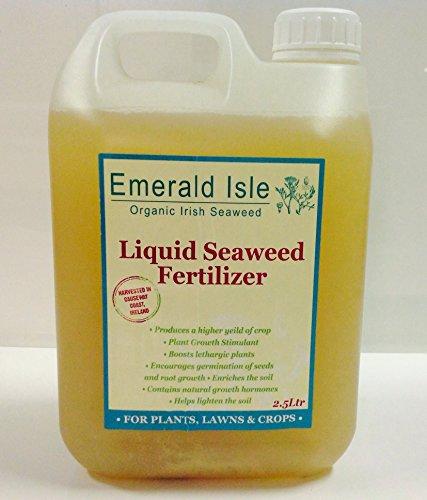 organic-seaweed-liquid-kelp-fertiliser-for-gardens-flowers-lawns-shrubs-organic-certification-iofga-