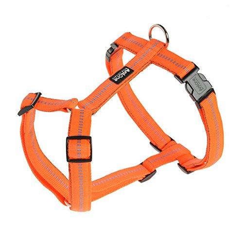 Fressnapf AniOne Nylon H-Geschirr Comfort, Größe:L, Farbe:Orange