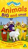 Picture Of Teletubbies: Animals Big And Small [VHS] [1997]