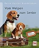 Vom Welpen zum Senior: Reise durchs Hundeleben -
