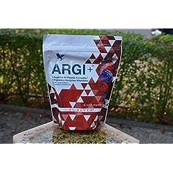 ARGI+ L-Arginine Boisson