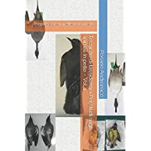 Tecniche di tassidermia Per studi sugli animali In pelle – Vol. 1: Preparazione in pelle di un merlo.