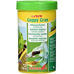 sera 00711 guppy gran 250 ml - Das Pflanzenfutter aus langsam sinkendem Softgranulat