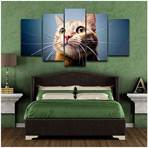Jishii Canvas Pictures Home Decor 5 Pieces Cute Big Eyes Cat Painting Modular Hd Prints Animal Poster Living Room Wall Art-B