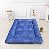 MUZIDP Tatami Matratze,Japanisch-Stil Feather Velvet Falten Quilted matratze,Double Single Anti-allergen Sleeping mat-I 90x200cm(35x79inch)