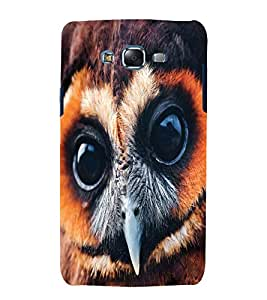 printtech Nature Bird Owl Back Case Cover for Samsung Galaxy Grand 2 G7102 / Samsung Galaxy Grand 2 G7106