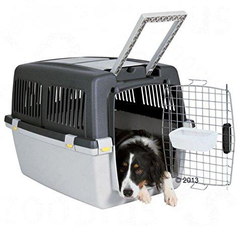 Robusta Cuccia per cani Trasportino Gulliver-Ideale per Viaggi in aereo, treno o auto