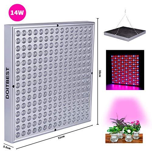 CCLIFE LED Pflanzenleuchte Pflanzenlampe Pflanzenlicht Zimmerpflanzen Wachstumslampe grow lampe 225 LEDs Rot&Blau für Zimmerpflanzen Blumen und Gemüse Tageslicht zum Stromsparen