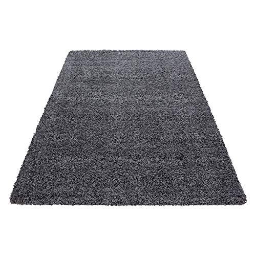 Hochflor Shaggy Teppich für Wohnzimmer Langflor Pflegeleicht Schadsstof geprüft 3 cm Florhöhe Oeko Tex Standarts Teppich, Maße:60x110 cm, Farbe:Grau (Teppich Und Graue Rote)