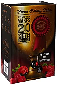 Victor's Drinks Mixed Berry Cider 20 Pint Kit