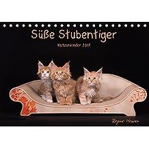 Süße Stubentiger - Katzenkinder (Tischkalender 2017 DIN A5 quer): Katzenkinder 2017 (Monatskalender, 14 Seiten ) (CALVENDO Tiere)