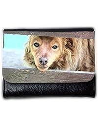 le portefeuille de grands luxe femmes avec beaucoup de compartiments // M00155750 La piel del perro Animales hocico Los // Medium Size Wallet
