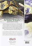 Image de Les Tortues de Jardin: Guide des soins et des maladies