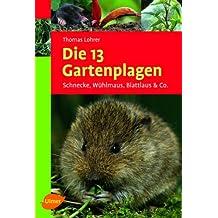 Die 13 Gartenplagen: Schnecke, Wühlmaus, Blattlaus & Co.