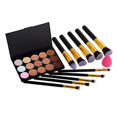 Vktech® 15 Couleurs de Palettes de Maquillage Cosmétique / Anti-cerne et Fond de Teint + 10PCS Pinceaux Maquillages + Houppe à Poudre - pour Salon Professionnel, Mariage, Fête, Utilisation à Domicile