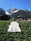 Felltrade Merino Schaffell Lammfell groß 130-140 cm weiß ökologische Gerbung