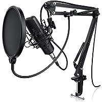 LIAM & DAAN Kondensatormikrofon + Mikrofonarm | Studiomikrofon-Set | Großmembran-Kondensatormikrofon + Mikrofonarm und -spinne + Popschutz + 2,5m 3,5mm Klinke zu XLR Kabel