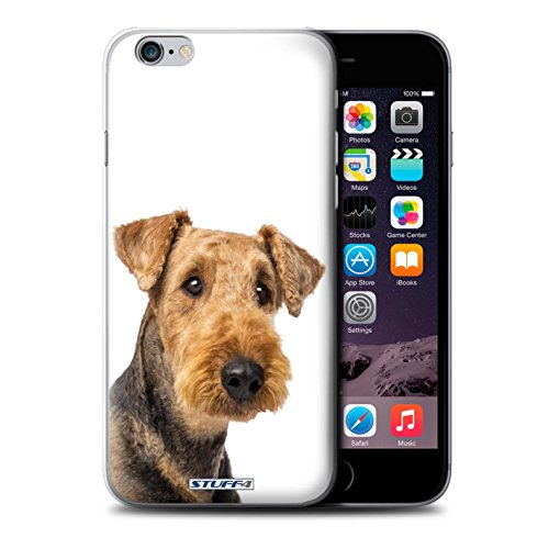 Coque de Stuff4 / Coque pour Apple iPhone 5C / Husky/Esquimau Design / Chiens Collection Airedale Terrier
