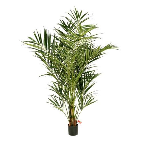 artplants – Künstliche Kentia Palme Miya mit 486 Blättern, Deluxe, 225 cm – hochwertige Dekopalme/Howea Kunstpalme