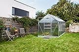 Gartenwelt Riegelsberger Gewächshaus Venus - Ausführung: 6200 HKP 6 mm Alu, Fläche: ca. 6,2 m², mit 2 Dachfenster, Sockel: 1,92 x 3,17 m