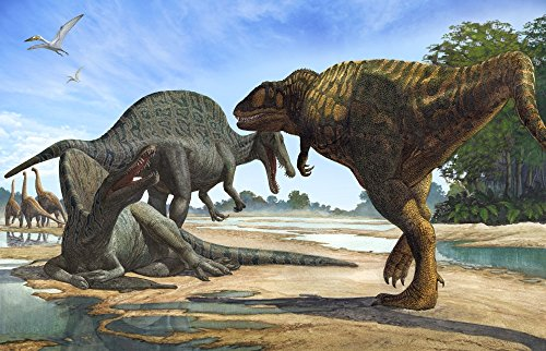 Sergey Krasovskiy/Stocktrek Images – A Carcharodontosaurus invades the territory of two Spinosaurus dinosaurs. Photo Print (88,90 x 56,90 cm)