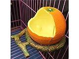 DVBDVS hnvis B NHV Domestico Ciotola per l'alimentazione di frutta Ciotola di plastica rotonda Portabicchiere Pappagallo Gabbia per cibo Alimentatore d'acqua-Arancio