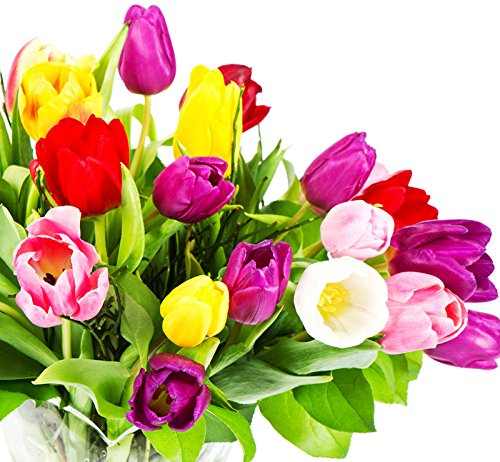 New Fasion Belle Tulip Artesanat Fleur artificielle tactile nuptiale bouquet de mariage Accueil Party Decor Hot