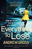 Everything to Lose by Andrew Gross (2014-04-10)