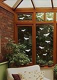 12 Vogel Aufkleber - Vögel Fenster Glas Greifvogel Fensterbild B416 (weiß)