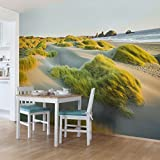 Vliestapete Premium - Dünen und Gräser am Meer - Fototapete Breit Vlies Tapete Wandtapete Wandbild Foto 3D Fototapete, Größe HxB: 255cm x 384cm