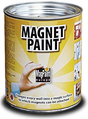 MagPaint 0.5L Magnet Paint -