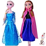 #3: Vibgyor Vibes Animated Movie Frozen Doll Sisters