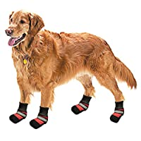 Pistachio Pet - Dog Rain Boot With Non-Slip Soles