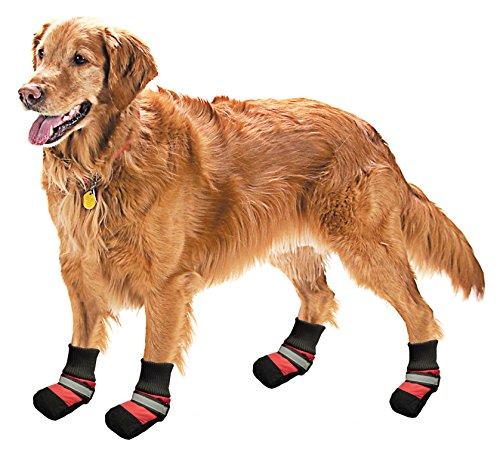 Pistachio Pet - Botas de lluvia con suelas antideslizantes para perro