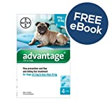 Advantage 100 - Medium Dogs - INCLUDES FREE EXCLUSIVE PETWELL® FLEA AND TICK E BOOK