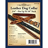 Realeather Crafts Leather Leathercraft Kit Dog Collar 0.75-inch