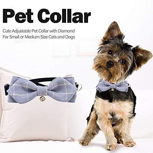Hundehalsband Katze Halsband Verstellbare Hundehalsband mit Fliege Halstuch und Glocke für Kleine Hund, Welpen, Katze, Haustier -
