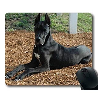Gaming-Mauspad, Pudel-Hund Nemecka Doga, Präzisionsnaht, strapazierfähiges Mauspad