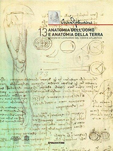 anatomia dell'uomo e anatomia della terra