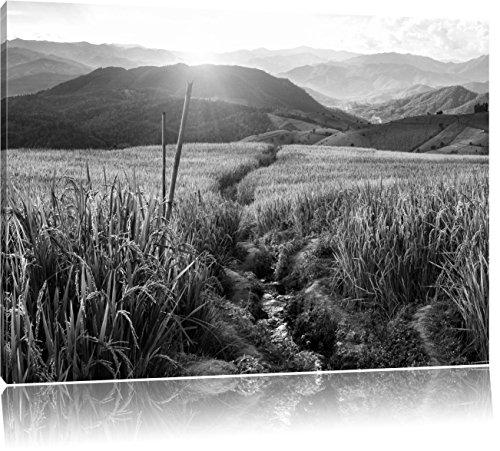 paddy-plantation-en-asie-art-b-w-format-60x40-gant-sur-toile-xxl-photos-compltement-encadre-avec-civ