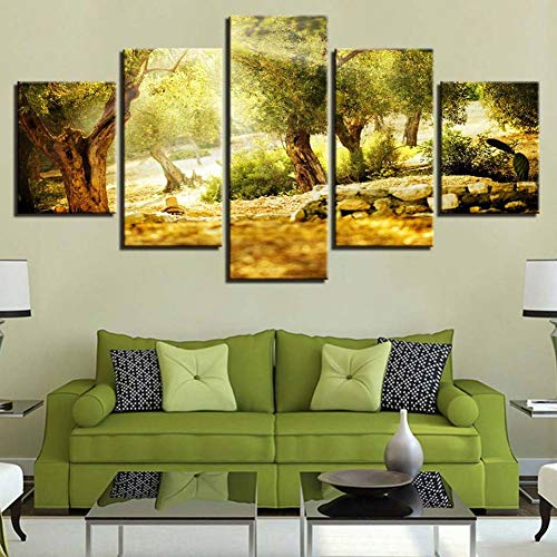 KQURNXSL Leinwand Malerei Wandkunst Wohnkultur Rahmen 5 Stücke Woods Sun Shines Naturlandschaft Für Wohnzimmer Moderne HD Gedruckt Bilder