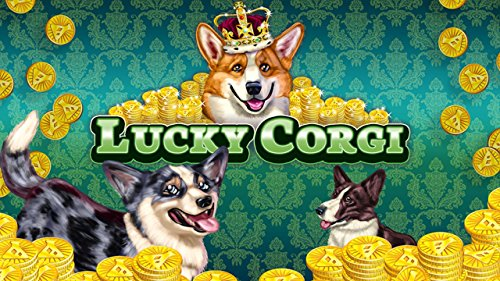 Image of Slots Lucky Corgi FREE Slots - Free Casino Slot Machine Game