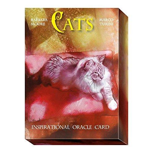 Cats Oracle par Barbara Moore, 32 Cartes et Instruction Multilingue dans une Boîte de Rangement