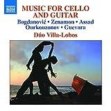 Musique pour violoncelle et guitare d'Amérique du Sud et d'Europe de l'Est
